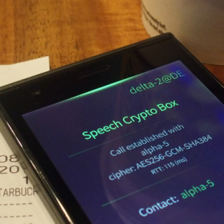 Submitting the messages with the Crypto Speech