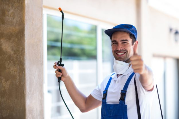 Promote your pest control company with SEO